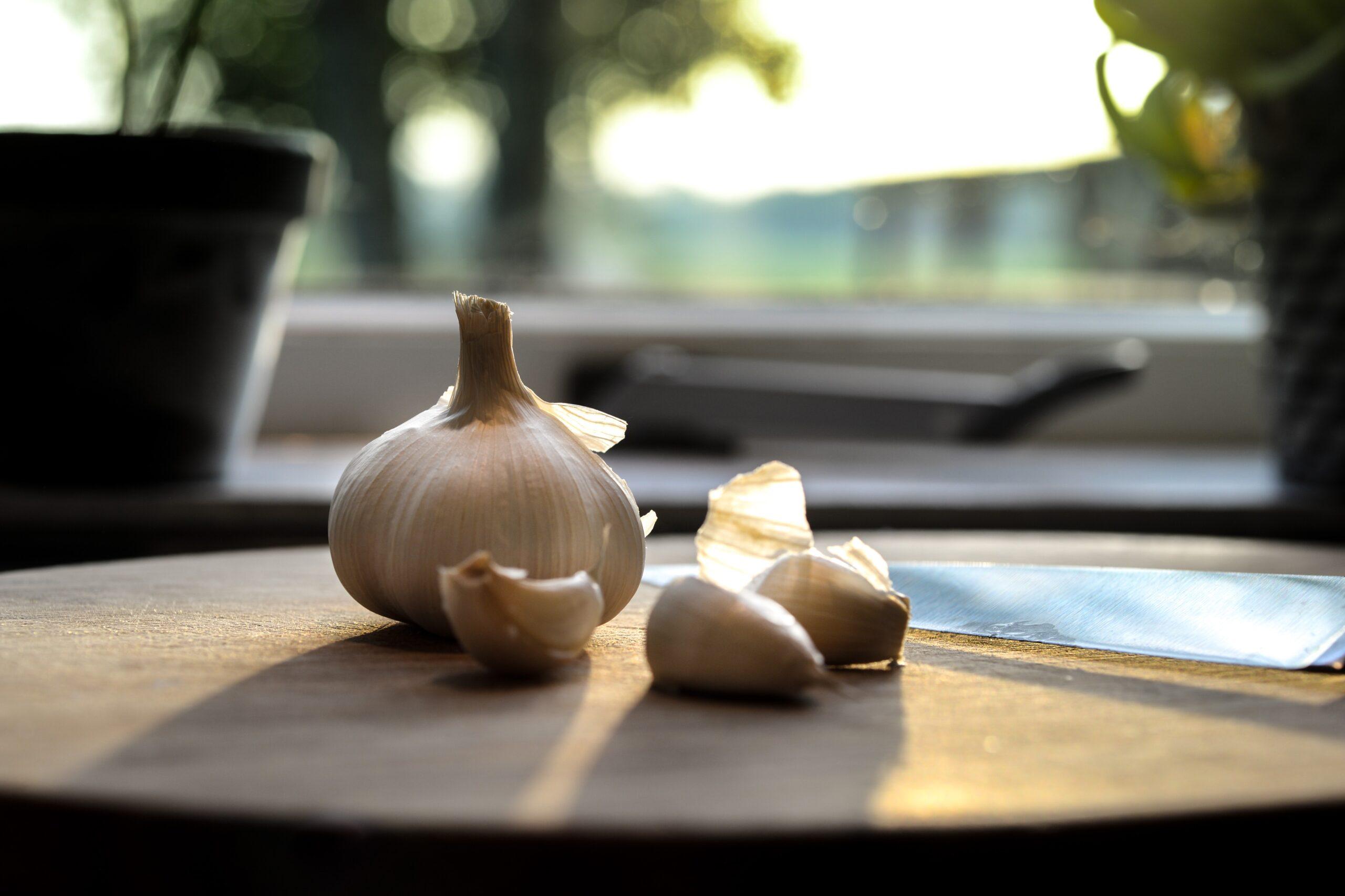 odore di aglio